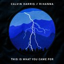 This Is What You Came For feat.Rihanna/Calvin Harris