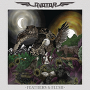 Feathers & Flesh (Bonus Track version)/Avatar