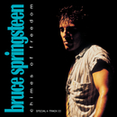 Chimes Of Freedom/Bruce Springsteen