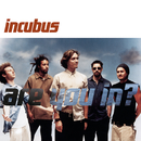 Are You In?/Incubus