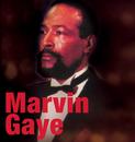Marvin Gaye/Marvin Gaye