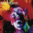 Facelift/Alice In Chains