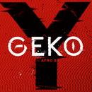 Y feat.Afro B/GEKO