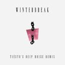 Winterbreak (Tiësto's Deep House Remix)/MUNA & Tiësto