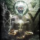 Anonymous/Gemini Syndrome
