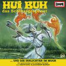 22/und die Irrlichter im Moor/Hui Buh, das Schlossgespenst