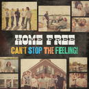 Can't Stop the Feeling!/Home Free
