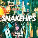 Cruel feat.ZAYN/Snakehips