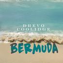 Bermuda/Drevo Coolidge