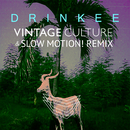 Drinkee (Vintage Culture & Slow Motion! Remix)/Sofi Tukker & Vintage Culture