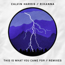 This Is What You Came For (Remixes) feat.Rihanna/Calvin Harris