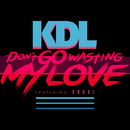 Don't Go Wasting My Love feat.Sessi/KDL