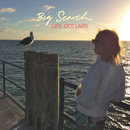 Life Dollars/Big Search