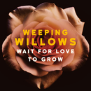 Wait for Love to Grow/Weeping Willows
