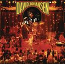 Live It Up/David Johansen