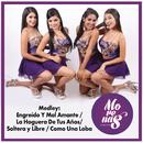 Medley: Engreído Y Mal Amante/ La Hoguera De Tus Años/ Soltera Y Libre/ Como Una Loba/Orquesta Morenas