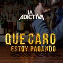 Qué Caro Estoy Pagando/La Adictiva Banda San José de Mesillas