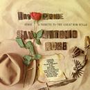 Sings San Antonio Rose/Ray Price