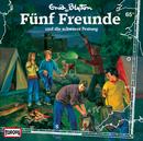 065/und die schwarze Festung/Fünf Freunde