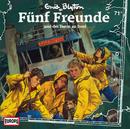 071/und der Verrat an Bord/Fünf Freunde