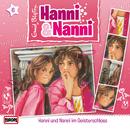 06/im Geisterschloss/Hanni und Nanni