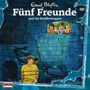 089/und das Familienwappen/Fünf Freunde