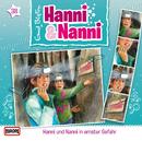 38/in ernster Gefahr/Hanni und Nanni