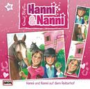 46/auf dem Reiterhof/Hanni und Nanni