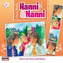 31/Alarm bei Hanni und Nanni/Hanni und Nanni