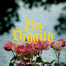 No Diggity/Campsite Dream