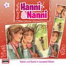 09/in tausend Nöten/Hanni und Nanni