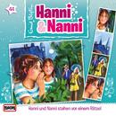 44/Hanni und Nanni stehen vor einem Rätsel/Hanni und Nanni