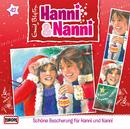 42/Schöne Bescherung für Hanni und Nanni/Hanni und Nanni
