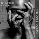 Struggle Sounds/Seun Kuti & Egypt 80