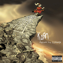Follow The Leader/Korn