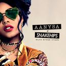 Burn Break Crash/Aanysa x Snakehips