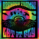 Let It Fly/Brendon Thomas and The Vibes