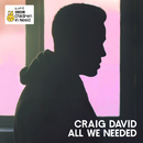 All We Needed (Official BBC Children in Need Single 2016)/Craig David