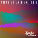 Sólo Tú (Toy Selectah Remix)/Bomba Estéreo