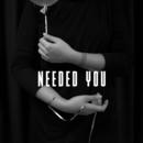 Needed You (Single Edit)/Amber Gomaa