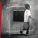 Black tarantella/Enzo Avitabile