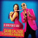 Se Sufre Pero Se Goza (Remasterizado)/David Calzado y Su Charanga Habanera