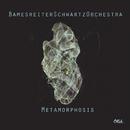 Metamorphosis/BamesreiterSchwartzOrchestra