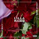 Förlåt (Safari Sound & Adde Remix)/Lilla Namo