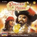 01/Der Schatz der halben Münze/Piraten der Meere