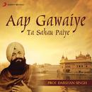 Aap Gawaiye Ta Sahau Paiye/Prof. Darshan Singh