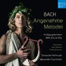 Bach: Angenehme Melodei (Huldigungskantaten, BWV 216a & 210a)/Alexander Grychtolik