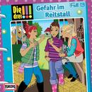 013/Gefahr im Reitstall/Die drei !!!