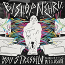 You Stressin'/Bishop Nehru