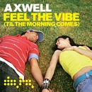 Feel the Vibe (Eric Prydz Remix)/Axwell